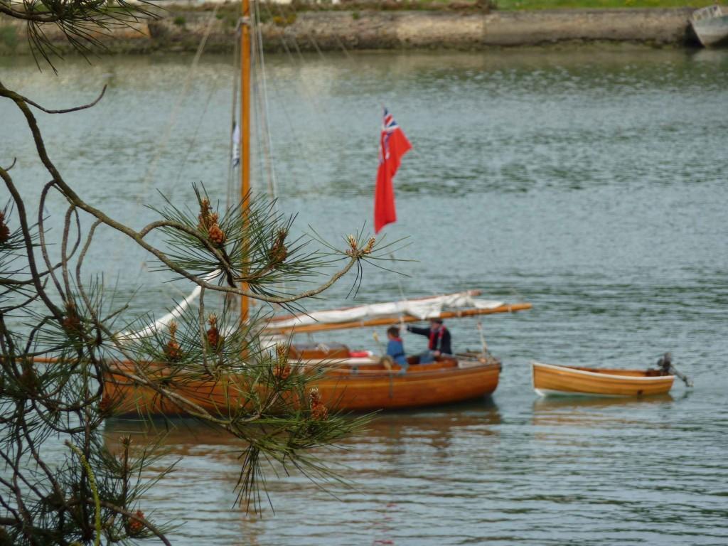 CK bois riviere (13)
