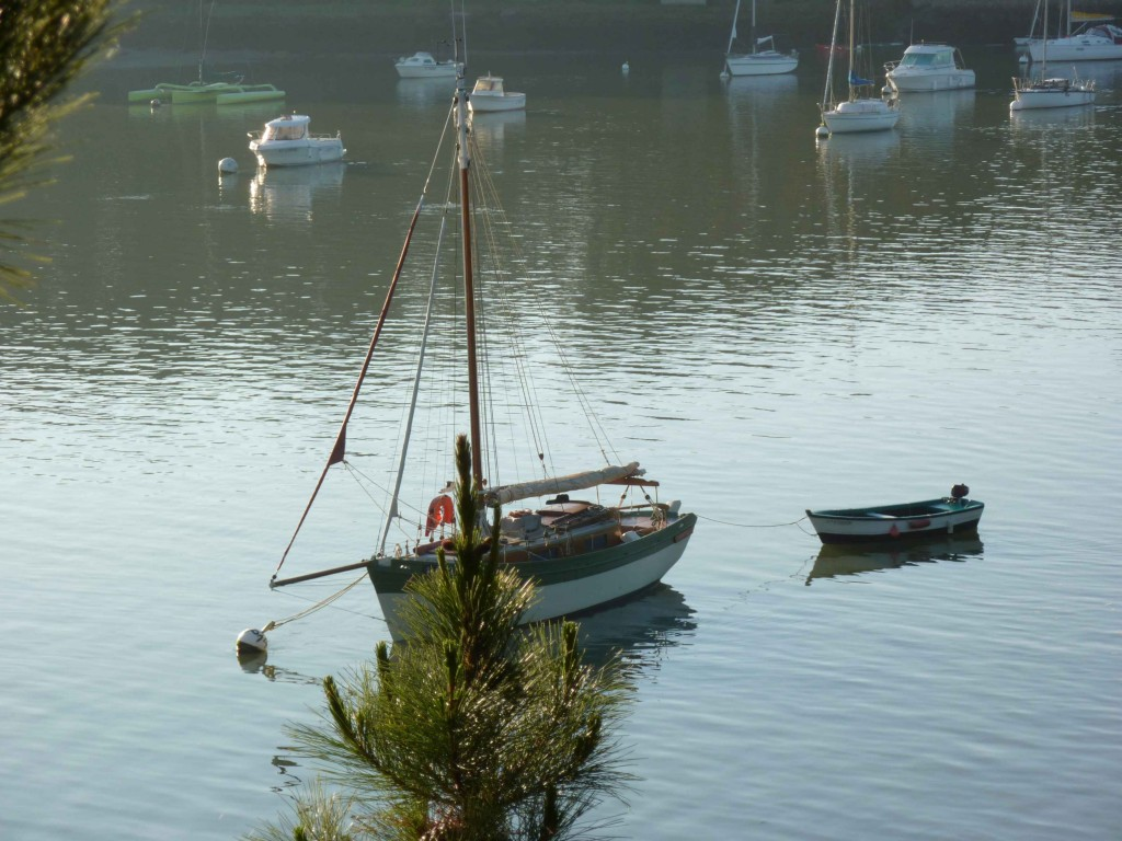 CK bois riviere (34)
