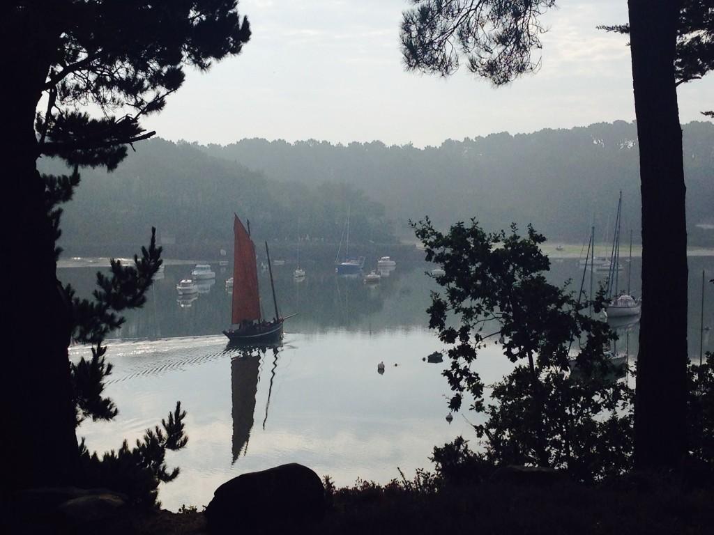 CK bois riviere (43)